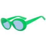 Retro Oval Goggles Thick Plastic Green Frame Round Lens Sunglasses Blue